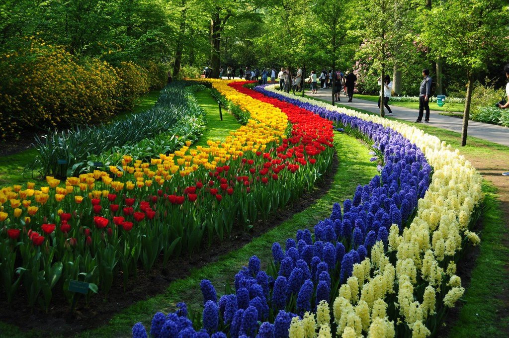 keukenhof the garden of europe woonder list On famous gardens in holland